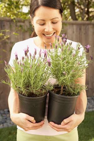 flogging: Asian woman smelling lavender plants