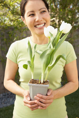 asian tulips: Asian woman holding potted tulips LANG_EVOIMAGES