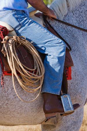 full length herbivore: Hispanic man riding horse