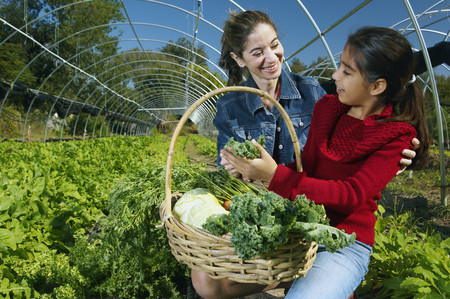 middle eastern families: Multi-ethnic mother and daughter harvesting organic produce