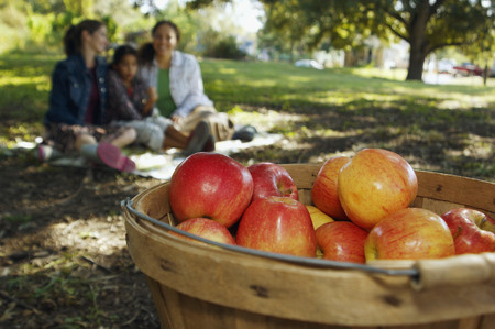 grampa: Basket of apples with family in background LANG_EVOIMAGES