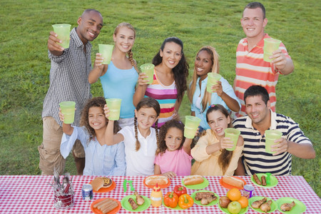 picnicking: Multi-ethnic friends toasting at picnic table