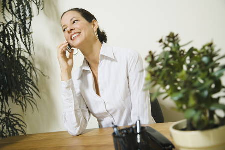 connexion: Mixed Race businesswoman talking on cell phone