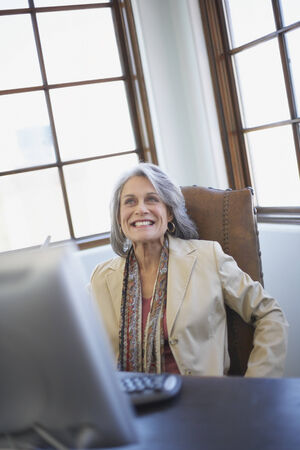mid life: Confident businesswoman working on computer at desk