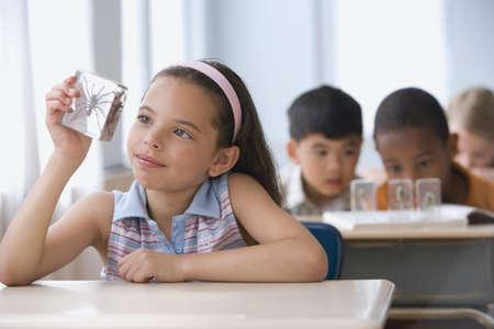 Hispanic girl looking at spider specimen in plastic Stock Photo