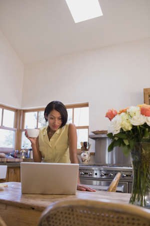 telecommuter: Native American woman looking at laptop in kitchen