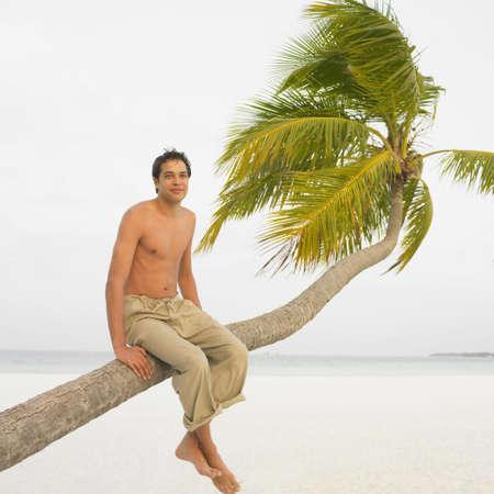 honeymooner: Man sitting on palm tree at beach