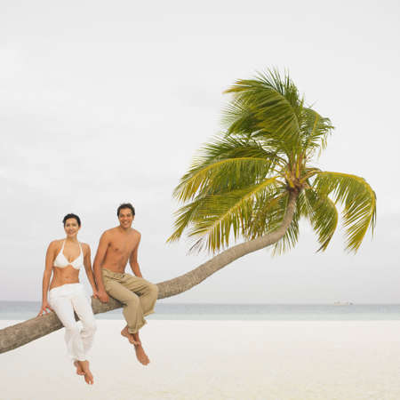 south american ethnicity: Couple sitting on palm tree at beach