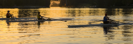 People rowing sculling boats on river Stock Photo