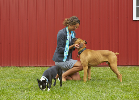 Kneeling mixed race woman petting dogs outdoors