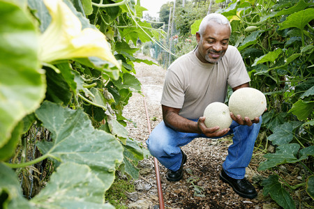 Black man holding cantaloupe in community garden