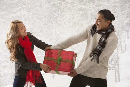 Couple fighting over present in snow