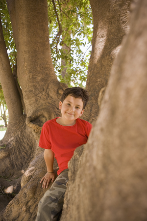 Hispanic boy climbing in tree