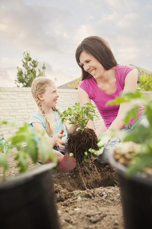 Caucasian mother and daughter planting in backyard Foto de archivo - 107918117