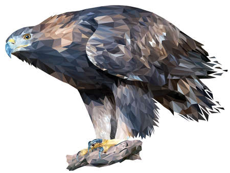 Golden eagle stands on a stone leaning forward. A bird of prey peers into the distance. Vector. Polygonal graphics.