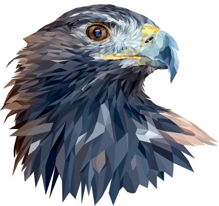 The head of a golden eagle close-up. The bird turned its head to the left. Vector. Polygonal graphics. Иллюстрация