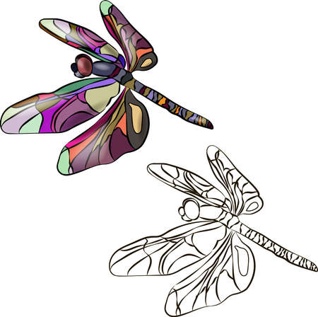 Two stylized dragonflies, identical in outline. One is brightly colored in different colors. The second dragonfly is black and white, it can be painted. Vector illustration for coloring. 10 EPS