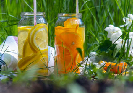 Picnic in a clearing with lemon and orange juice. Drinks are poured into glass jars. Fruits are cut into the jars and tubes for drinks are inserted.