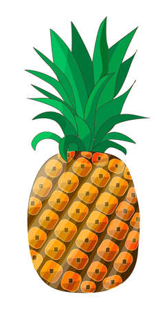 Stylized ripe pineapple isolated on a white background. Vector. EPS10.