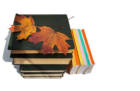 Several volumes of old thick books are stacked. Top are yellow maple leaves. Nearby are small thin books with colorful covers. Books are isolated on a white background. Clean place for text.
