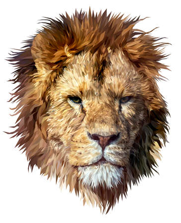 Portrait of an adult lion. Isolated. Detailed. Polygonal graphics. Lowpoly. Vector. EPS10.  イラスト・ベクター素材