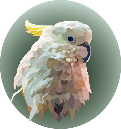 Portrait of a white yellow-crested cockatoo on a green oval background. A cockatoo with ruffled feathers turned its head to the side. Illustration, Vector, eps10.