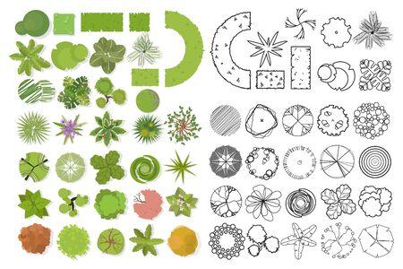 Vista superior de los árboles. Diferentes árboles, plantas vector set para diseño arquitectónico o paisajístico. Conjunto de ilustración plana lineal y en color.