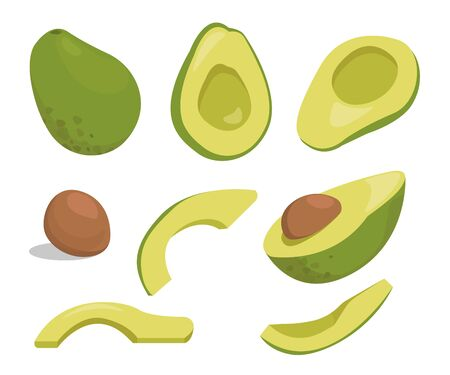 Avocado, fresh fruit vector illustration set. Whole, cut in half and slice. Vegan food vector, isolated on white background.