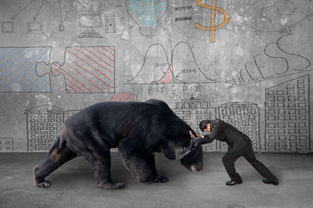 Businessman fighting against black bear with business concept doodles wall background photo