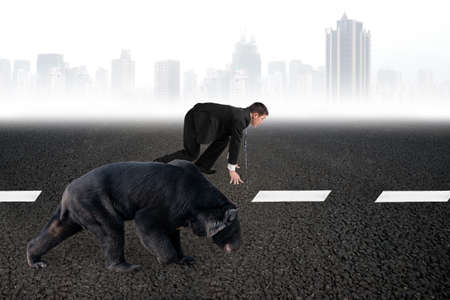 run faster: Businessman and black bear are ready to race on asphalt road white line with gray urban scene skyline background. Stock Photo