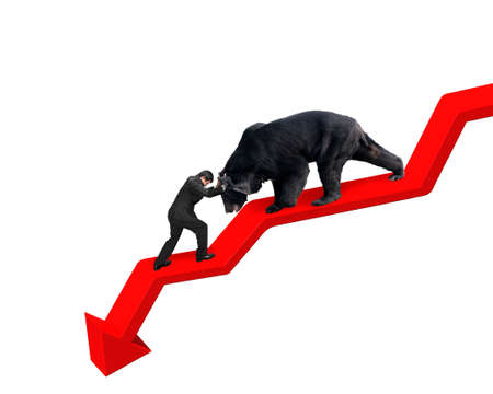 Businessman against black bear on red arrow downward trend line with white background. Fight back bearish market concept.
