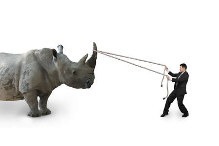 challenges: Businessman pulling rope against a huge rhinoceros isolated on white background.