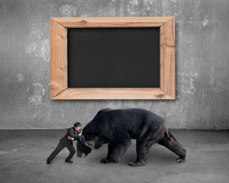 losing knowledge: Businessman fighting against black bear with blank blackboard on concrete wall background.