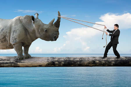 Businessman pulling rope against a huge rhinoceros balancing on tree trunk, with blue sky sea background.