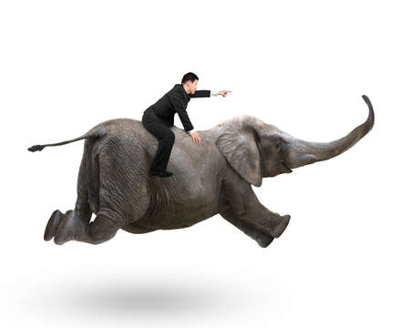 Businessman with pointing finger gesture riding on elephant, isolated on white. Banque d'images
