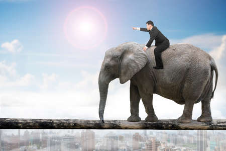 Man with pointing finger gesture riding elephant walking on tree trunk, with sunny sky cityscape background. Stock Photo