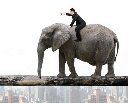 Man with pointing finger gesture riding elephant walking on tree trunk, with city buildings background. Banco de Imagens