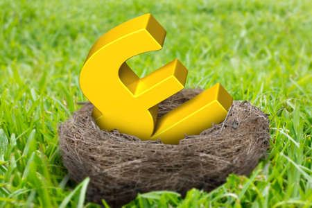 Golden pound sterling symbol in nest on the meadow background. Stock Photo