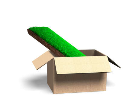 Concept of investing or buying green space, environmental afforestation, a turf with grass and mud texture in open cardboard box, isolated on white, 3D illustration. Reklamní fotografie