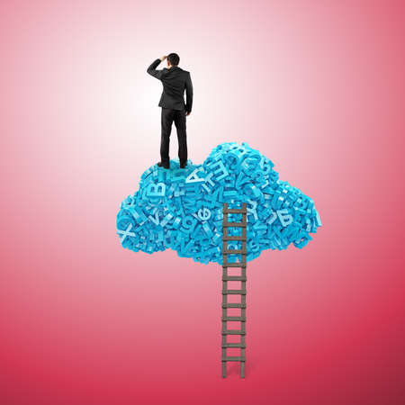 Big data and cloud computing concept. Rear view of business man standing gazing on red cloud of 3d letters and numbers, isolated on white background. Banco de Imagens