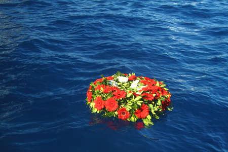 colorful flowers in the sea. Bodrum, Turkey 写真素材