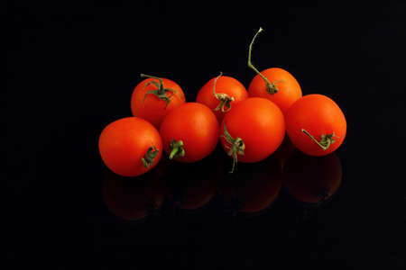 Fresh cherry tomatoes on a black background. Bunch of fresh cherry tomato on a black background