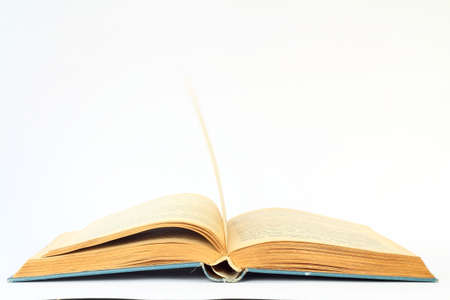 White opened book with blank pages.
