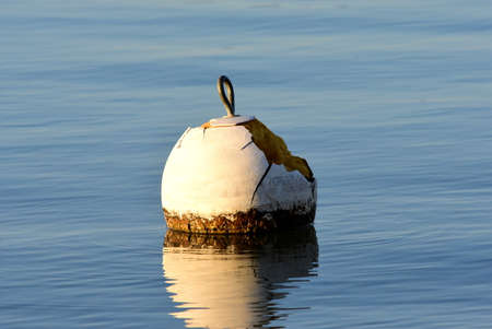 an isolated white buoy floating on a blue lake, close up