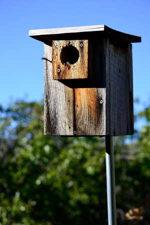 birdhouse, rustic with blue sky, out in a field