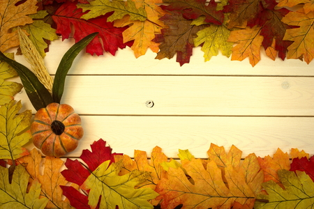 autumn, fall, background on whitewashed knotty pine with leaves and pumpkin Banco de Imagens