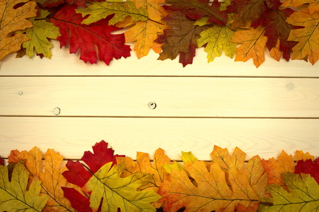 autumn, fall, background on white knotty pine with leaves on top and bottom