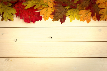 autumn, fall, background on whitewashed knotty pine with leaves at top
