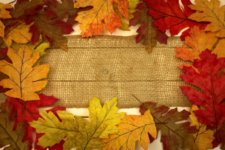 fall, autumn, background with leaves as border