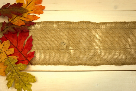 autumn, fall, background on white wash pine board